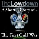 The Lowdown: A Short History of the First Gulf War (Unabridged) Audiobook, by Dr Robert Johnson