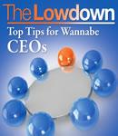 The Lowdown: Top Tips for Wannabe CEOs (Unabridged) Audiobook, by Richard Charkin