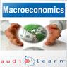 Macroeconomics AudioLearn Follow Along Manual: AudioLearn Economics Series (Unabridged), by AudioLearn Editors