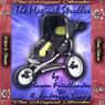 The Magical Stroller (Unabridged) Audiobook, by Susan Friedlander