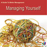 Managing Yourself: A Guide to Better Management (Unabridged) Audiobook, by Di Kamp