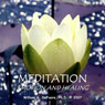 Meditation, Emotion, and Healing: Connecting With the Source of Well Being Within You Audiobook, by William G. DeFoore