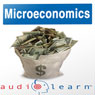Microeconomics AudioLearn Follow-Along Manual: AudioLearn Economics Series (Unabridged) Audiobook, by AudioLearn Editors