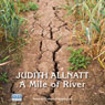A Mile of River (Unabridged) Audiobook, by Judith Allnatt