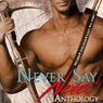 Never Say Never Anthology (Unabridged), by B.G. Thomas