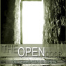 The Open Door: Master Keys to Open Doors and Seizing the Opportunity of a Lifetime (Unabridged), by Dr. Shannon C. Cook