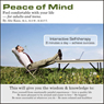 Peace of Mind (Unabridged) Audiobook, by Abe Kass