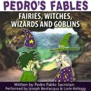 Pedro's Fables: Fairies, Witches, Wizards, and Goblins Audiobook, by Pedro Pablo Sacristan