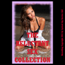 The Reluctant Sex Collection, Twenty Erotica Stories (Unabridged), by Stacy Reinhardt