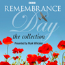 Remembrance Day: The Collection (Unabridged) Audiobook, by Mike Hally
