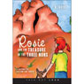 Rosie and the Treasure of the Three Nuns: Historical Fiction for Youth (Unabridged) Audiobook, by D. Boyd