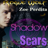 Shadow Scars: Rogue Wolf, Book 1 - Haven City Series (Unabridged) Audiobook, by Zoe Perdita