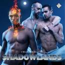 Shadowlands (Unabridged) Audiobook, by Charlie David