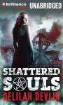 Shattered Souls: A Caitlyn O Connell Novel, Book 1 (Unabridged), by Delilah Devlin