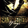 Shattered Wings (Unabridged) Audiobook, by Bryan Healey