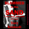 Slammed in the Sand: A Very Rough MFF Threesome Public Sex Short (Harsh Sex Encounters) (Unabridged) Audiobook, by Stacy Reinhardt