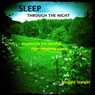 Sleep Through the Night: Hypnosis for Restful, Rejuvenating Sleep, by Maggie Staiger