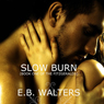 Slow Burn (Unabridged) Audiobook, by E. B. Walters