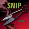 Snip: A Jack Vu Mystery, Book 3 (Unabridged) Audiobook, by Doc Macomber