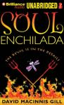 Soul Enchilada (Unabridged), by David Macinnis Gill