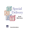 Special Delivery (Unabridged) Audiobook, by Zoe Barnes