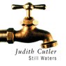 Still Waters (Unabridged) Audiobook, by Judith Cutler