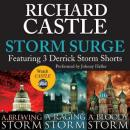 Storm Surge: Featuring 3 Derrick Storm Shorts: Brewing Storm, Raging Storm, and Bloody Storm (Unabridged) Audiobook, by Richard Castle