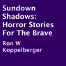 Sundown Shadows: Horror Stories for the Brave (Unabridged) Audiobook, by Ron W Koppelberger