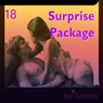 Surprise Package: Ann Summers Short Story 18 (Unabridged) Audiobook, by Ann Summers