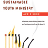 Sustainable Youth Ministry: Why Most Youth Ministry Doesnt Last and What Your Church Can Do About It (Unabridged), by Mark DeVries