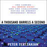 A Thousand Barrels a Second: The Coming Oil Break Point and the Challenges Facing an Energy Dependent World (Unabridged) Audiobook, by Peter Tertzakian
