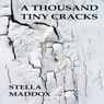 A Thousand Tiny Cracks (Unabridged) Audiobook, by Stella Maddox