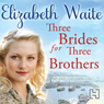 Three Brides for Three Brothers (Unabridged) Audiobook, by Elizabeth Waite