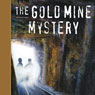 Tom and Ricky and the Gold Mine Mystery: A Tom and Ricky Mystery (Unabridged) Audiobook, by Bob Wright
