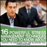 Ultimate Guide To Stress Management (Unabridged) Audiobook, by Daniel Rosenstein