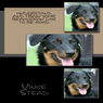 Understand and Train Your Beauceron Dog to Be Good (Unabridged) Audiobook, by Vince Stead