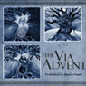 The Via Advent (Unabridged), by Shawn Small