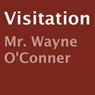 Visitation (Unabridged) Audiobook, by Wayne O'Conner