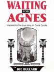 Waiting for Agnes (Unabridged) Audiobook, by Joe Bullard