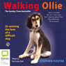 Walking Ollie (Unabridged) Audiobook, by Stephen Foster