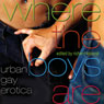 Where the Boys Are: Urban Gay Erotica (Unabridged), by Richard Labonte
