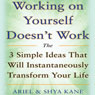 Working on Yourself Doesnt Work: The 3 Simple Ideas That Will Instantaneously Transform Your Life (Unabridged), by Ariel