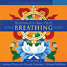 Your Breathing Body, Volume 2 Audiobook, by Reginald A. Ray